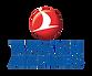 TurkishAirlines_Plan de travail 1.png