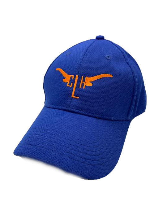 Camp Longhorn Youth Hat