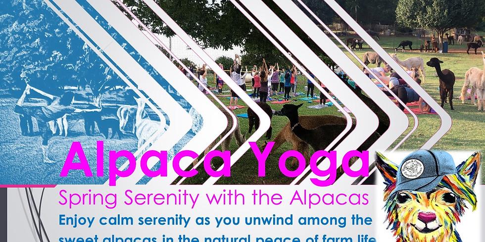 Alpaca Yoga: Spring Serenity