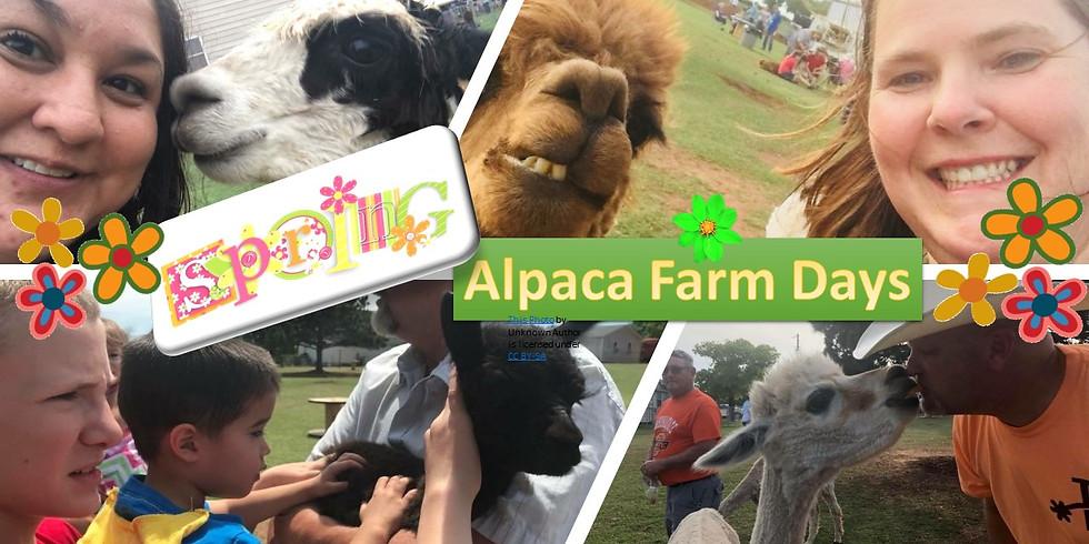 Spring Alpaca Farm Days - VENDOR FEES & REGISTRATION ONLY