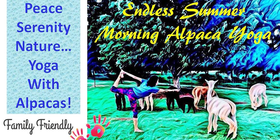 Endless Summer Morning Alpaca Yoga