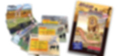 Educards Pic website.jpg
