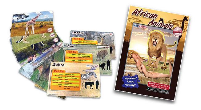 Educards Pic website.jpg