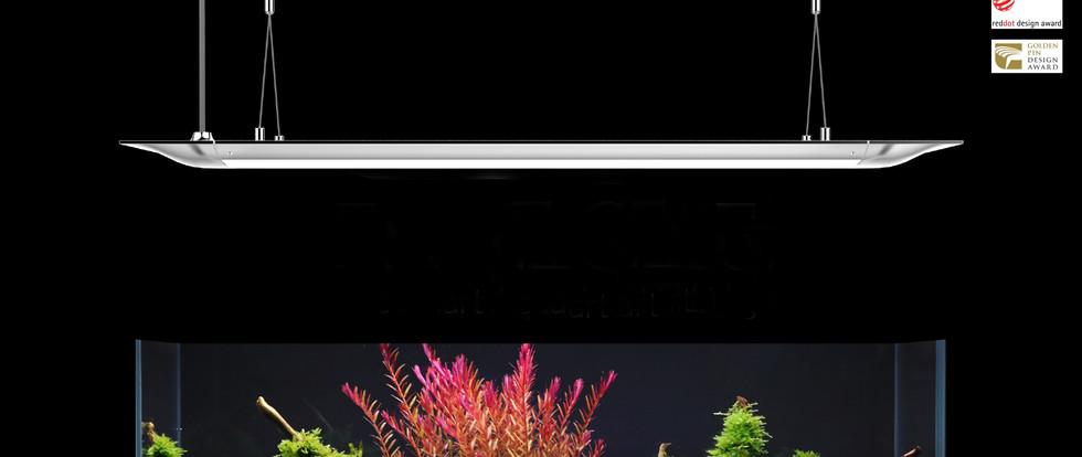 FLATONE_SENSE_WEB_logo_edited.jpg