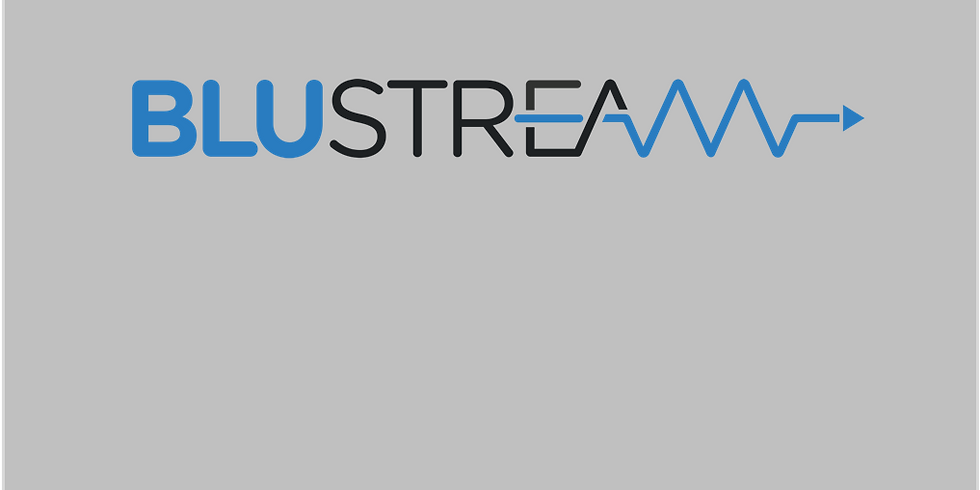 Blustream Product Overview
