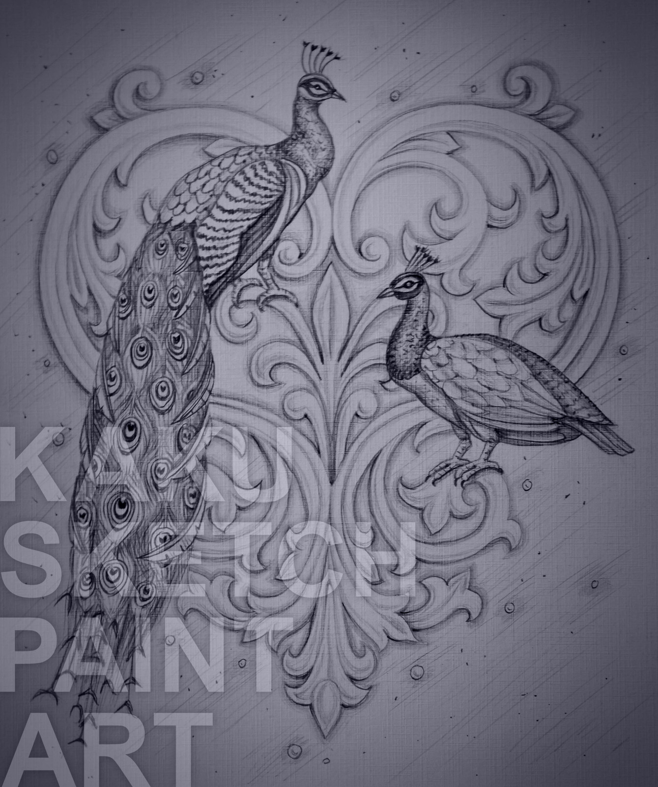Peacock pencil sketch art