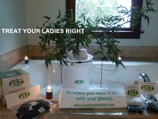 #treatyourladiesright : Advertising campaign in 1000 Watts Magazine