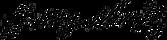 logo_mynove25.png