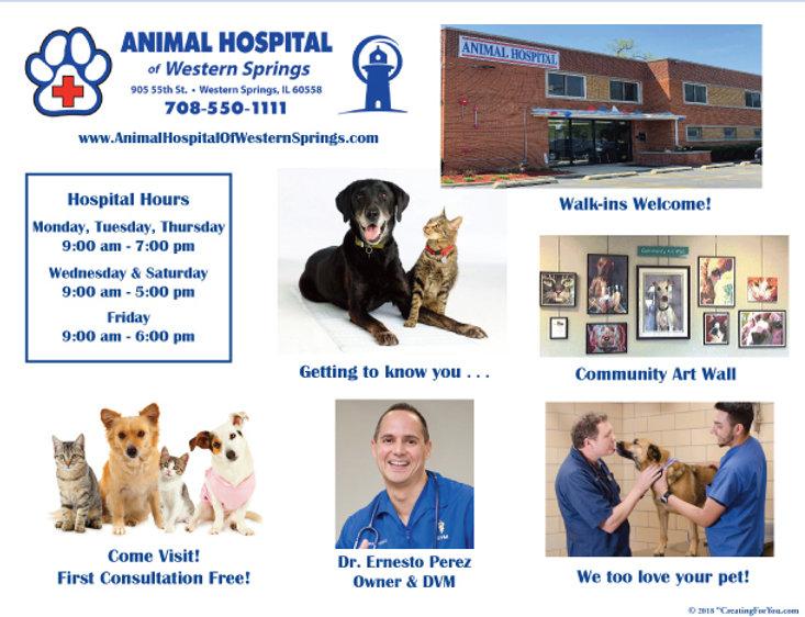 Animal Hospital Western Springs Large Po