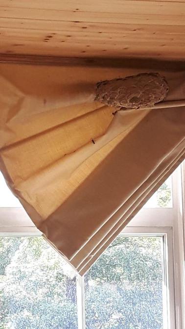 Nest on Curtain