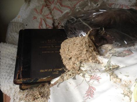 Book Nest