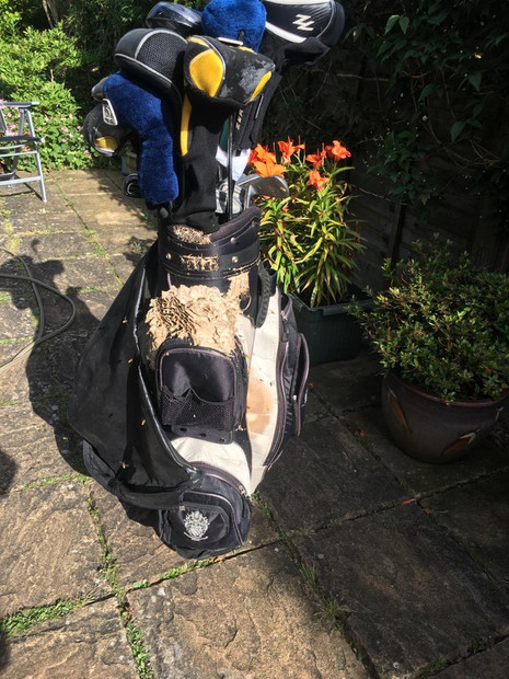 Golf Bag Wasp Nest