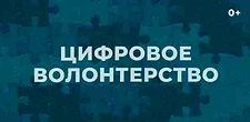 Cyber Volonteer.jpg