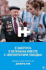 Волонтеры Победы_превью_сити.jpg
