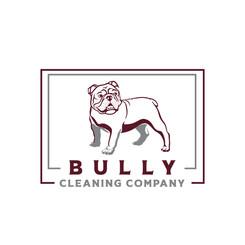 Bully Cleaning Company digital use.jpg