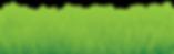 GrassBorder-Vector.png