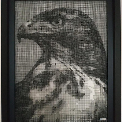 J.M Collell - Falcon