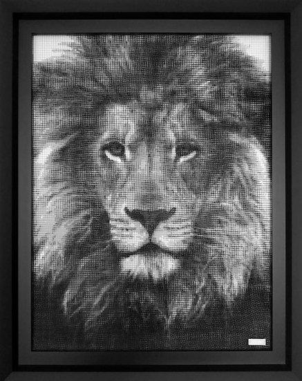 J-M Collell - LION 02