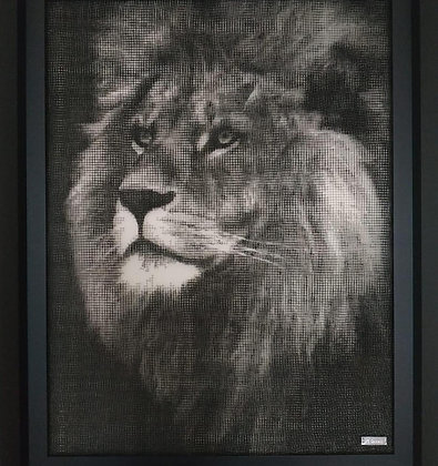 J-M Collell - LION 01