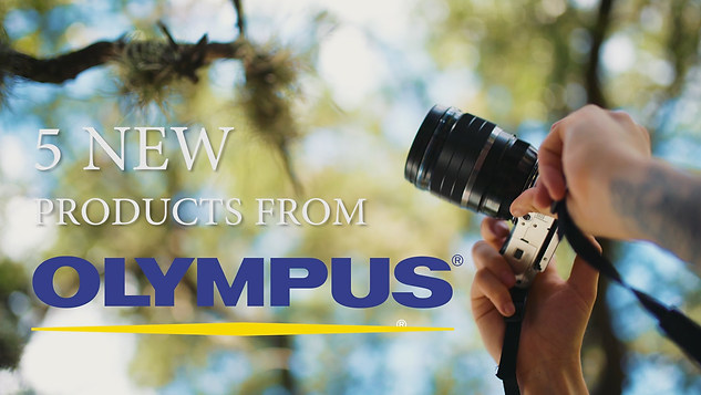 Exploring Austin with the Olympus E-PL8 and more!