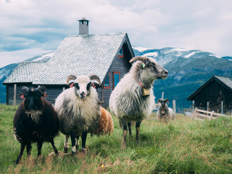 Voss, Hordaland, Norway