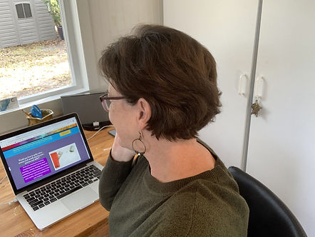 Terry Eldridge, Artist and Business Coach helping an artist with her website.