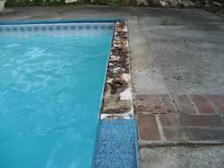 Damaged/Missing Pool Coping Tile