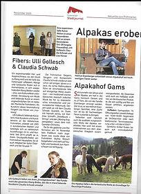 FIBERS - im Frohnleitner Stadtjournal 20