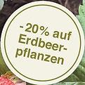 ins_zwanzger_KZ_98x45mm_erdbeeren_PRINT_