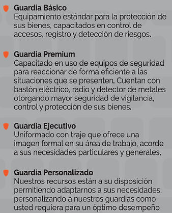 guardias de seguridad privada