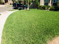 Customer Lawn