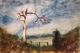 Der vom Wetter gezeichnete Baum