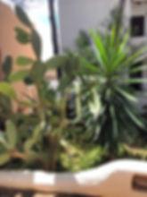 Club Cala Vadella Ibiza for Sale
