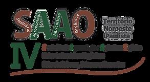 IV SAAO - SÓ TÍTULO PNG.png