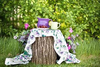Tea on a log.jpg