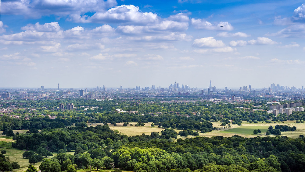 Richmond Park - A great place for a walk, cylce, horse ride, game of golf or a spot of fishing.