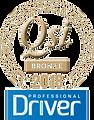 QSI-logo-2018-Bronze_edited.png