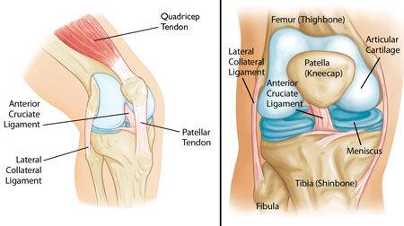 Knee pain Knee arthrits Manassas Haymarket Gainesville Centerville Woodbridge Warrenton VA Knee replacement