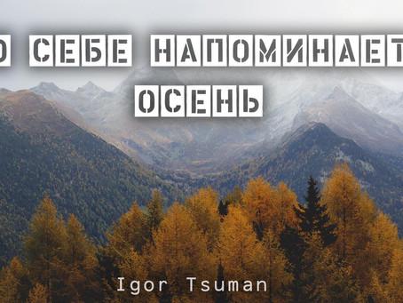 Новая песня «О себе напоминает осень» - Игорь Цуман