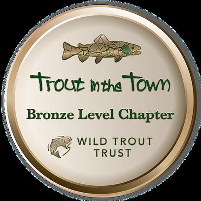 TinTT Bronze badge.png