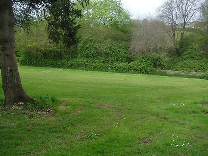 Site of proposed pond and wetland.JPG