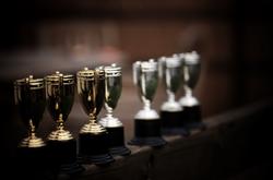 جوائز وإنجازات