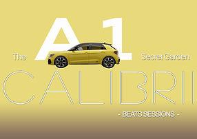 The Audi A1 Secret Garden.jpg