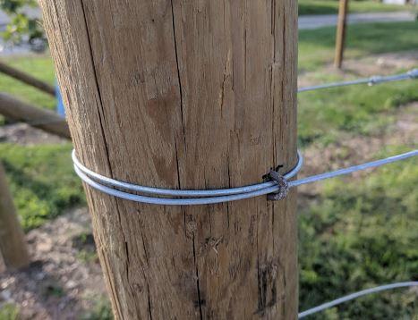 Vineyard Wire