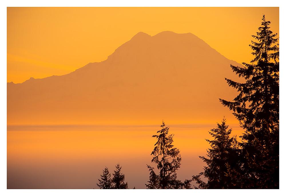 Mt. Rainier by Dan 2019