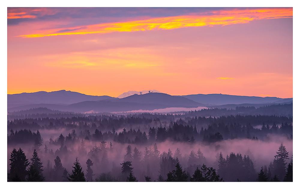 Foggy Morning by Dan 2018