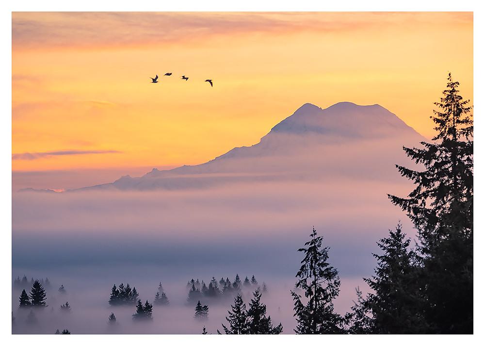Atmospheric Sunrise by Dan 2019