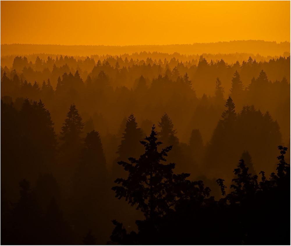 The Haze of Summer by Dan 2020