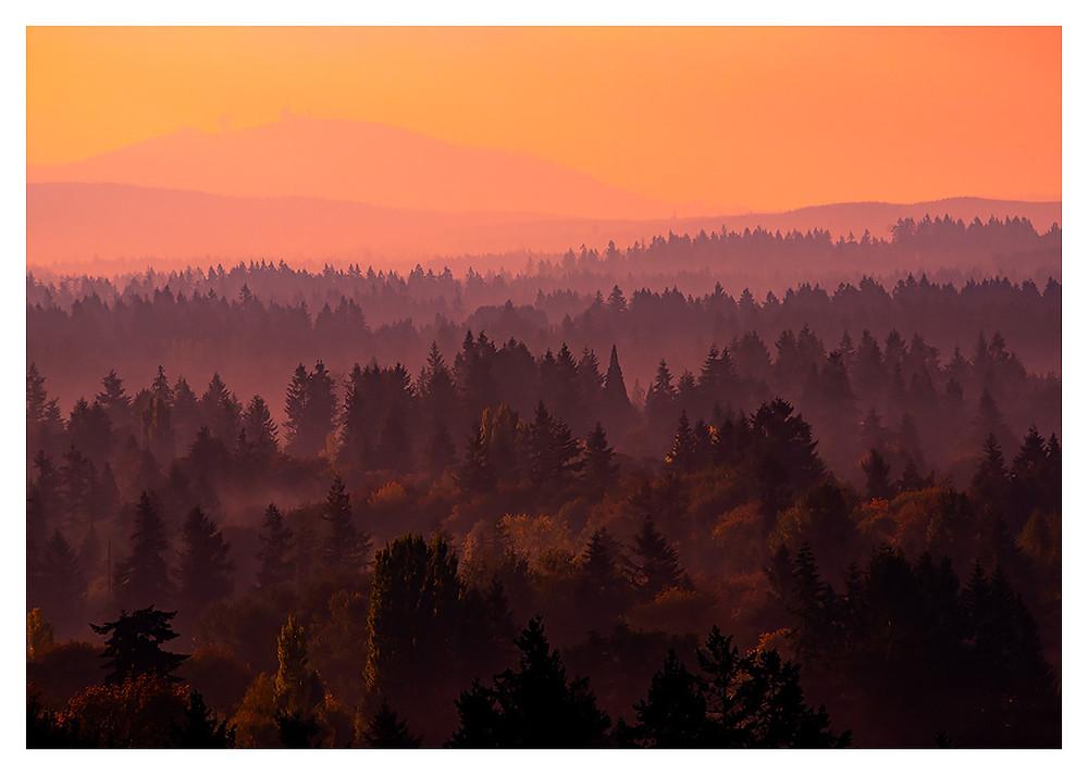 Autumnal Sunrise, Copyright Dan 2018