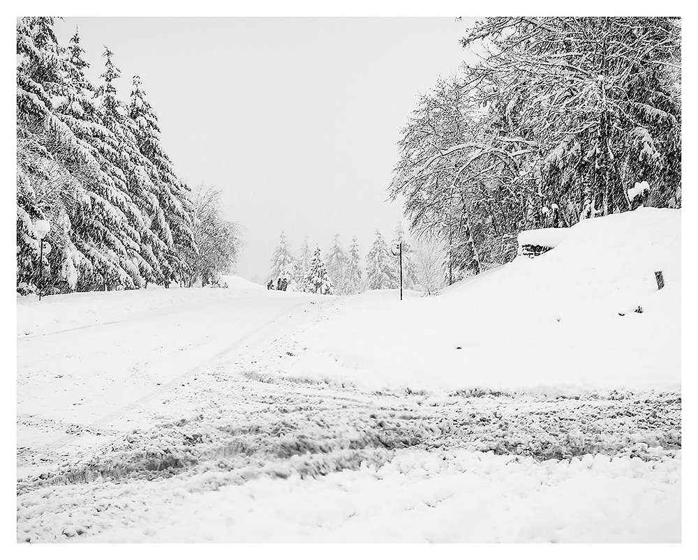 Snowbound - by Dan 2019